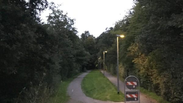 Blick in den Grünzug an der Nackenberger Straße